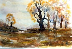 Art: watercolour:...Rainy Days... (Nadia Minic) Tags: autumn trees nature water rain automne landscape eau wasser herbst pluie arbres watercolour luxembourg paysage landschaft bume regen aquarell humide feucht lenningen nadiaminic