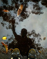 Shadow holding a feather (abhishekskumar) Tags: water sky trees shoe feather leaf shadow reflection shotoftheday photography artistic creative creation lang change lovely planetearth plant waterlove naturelovers intothewild reflectionlovers reflectionstory blue black shadows