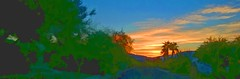 WE'LL HAVE A HOT TIME IN THE OLD TOWN TONIGHT (Irene2727) Tags: sunset panorama pano landscape scape nature colors trees palm blue outdoors