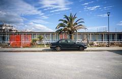 Viareggio, Italy. (wojszyca) Tags: contax g2 zeiss biogon 21mm fuji fujichrome velvia 100f rvp100f soloparking carspotting car palm tree seaside resort offseason viareggio italy may2017