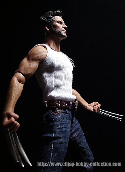 Wolverine (19)