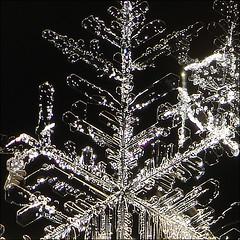 ~ FALLEN ~ (ViaMoi) Tags: snowflake snow macro nature design crystal flake cybershot newyearseve newyears snowing eliment viamoi 20092010