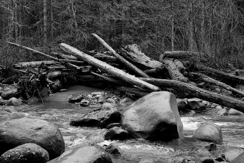 Wallace River Logs