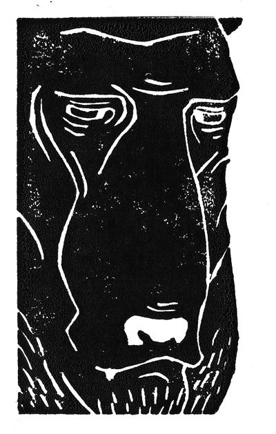 Bear Portrait #2