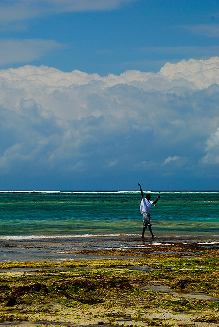 Fisherman in Diani Beach