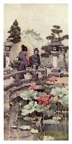 025- Flores de loto-The flowers and gardens of Japan (1908)-  Ella Du Cane