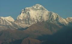 DSCF1565 (kelir) Tags: nepal annapurnabasecamp