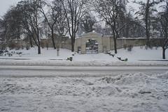 Zima, Kalisz, 10.01.2010 (Wujo Jaro (mostly off)) Tags: winter snow zima kalisz snieg