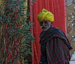 Portraits of India (cyrusmekon) Tags: india travels nikon colourful traveler magnificant tellmeastory incredibleindia nikond90 portraitsofindia unseenindia gujrat rajasthan maharashtra goa