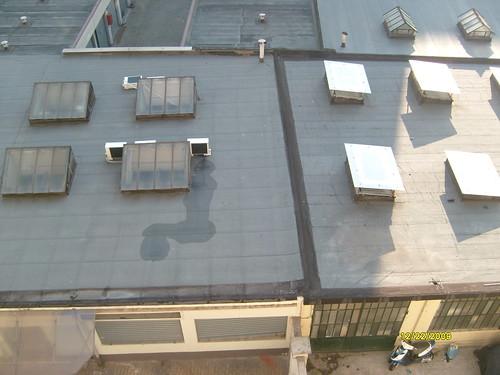 femeia de pe acoperis