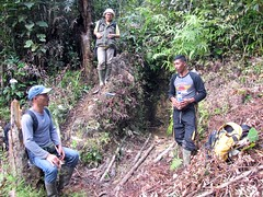 Anak Perak (Mangiwau) Tags: green sumatra indonesia banda aloe mercury kali air traditional mining illegal saya gunung aceh mane hijau emas anak sungai perak peti masyarakat meulaboh raksa penambangan sigli pidie atjeh tutut izin tanpa geumpang woyla merkuri ujoen