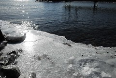 Icy Water Edge
