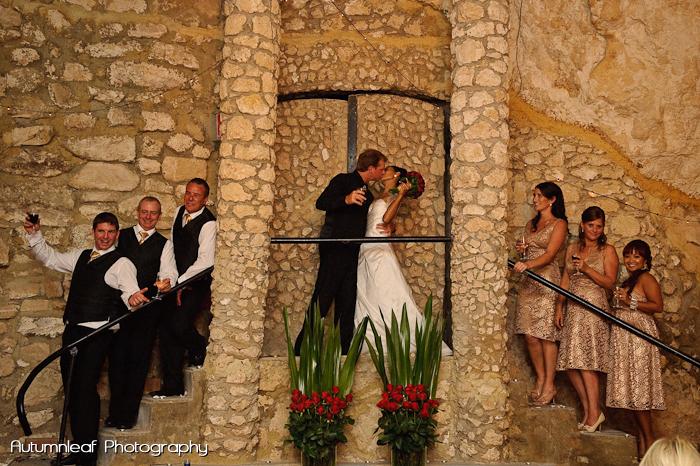 Ari & Shaun's Wedding - The Bridal Party