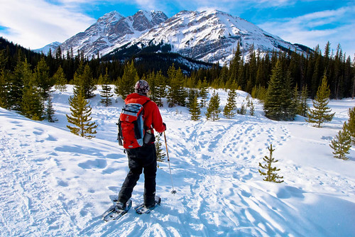 Kananaskis Country Snowshoeing