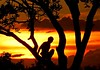 ☼ (Edison Zanatto) Tags: sunset brazil naturaleza sun sol southamerica nature silhouette brasil backlight sunrise contraluz atardecer soleil nikon natureza natur pôrdosol 夕陽 d200 silueta crépuscule sonne ocaso sonneuntergang alvorada contrejour controluce anochecer anoitecer coucherdesoleil crepúsculo nascente contrallum silhueta puestadelsol americadosul poente puestas fimdetarde luscofusco südamerika centrooeste dilúculo postadelsol firsttheearth crepúsculovespertino postadosol continentesulamericano edisonzanatto