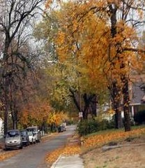 a residential street in Indy's SG district (courtesy AIA)