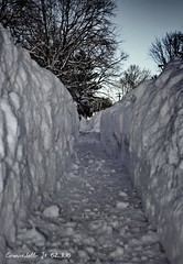 White Cliffs of MontCo (Al Camardella Jr.) Tags: winter snow philadelphia wind blizzard snowplow montgomerycounty snowpocalypse snowmageddon snomg february102010