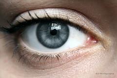 Gothika. ([L] di .zuma) Tags: grigio blu azzurro gothika riflesso profondo occio