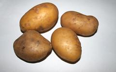 Zutat Kartoffeln