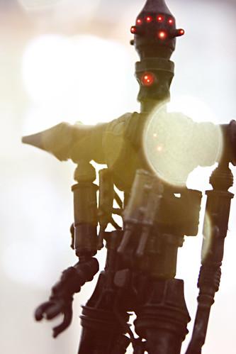 Assassin Droid in Summer