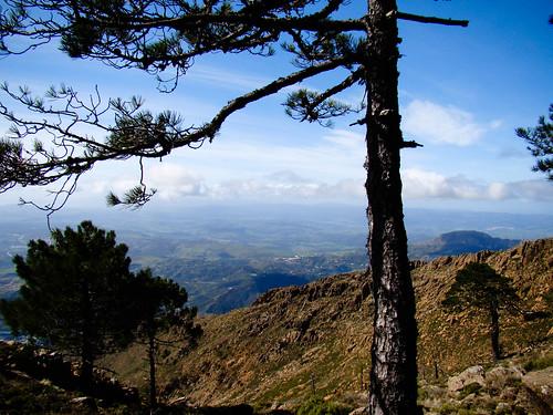 Camino de Los Realillos (3)