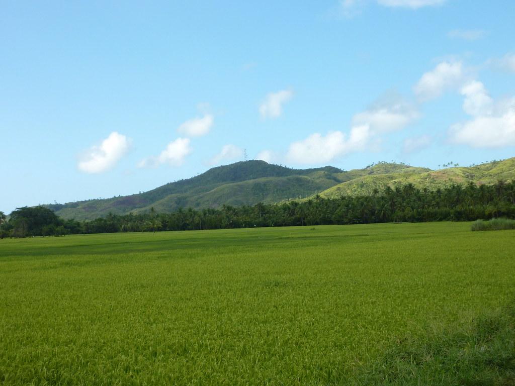 Guiam-Tacloban (11)