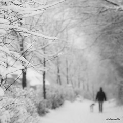 (city/human/life (very busy)) Tags: schnee trees winter people blackandwhite bw dog house snow tree ice germany deutschland nikon frost bright bokeh path explore hund human nrw sw 70300mm wald frontpage bergischesland velbert weg snowcovered huser mensch waldweg d90 unschrfe schwarzweis spaziergnger nikond90 velbertlangenhorst