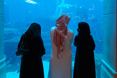 One is not enough (turbotoddi) Tags: fish scarf aquarium dubai dress muslim islam hijab tokina fishtank arab af f28 polygamy keffiyeh burka bigamist bigamy 1116mm bigami traditionalarabclothing