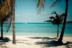 Nassau, Bahamas (Jill Cantrell Photography) Tags: ocean cruise blue trees vacation sky beach water relax boat fishing sand coconut palm serene bahamas nassau tranquil