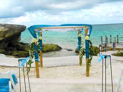 foto 7 (D'Francia Floreria) Tags: flores azul del mar playa aves rosas paraiso romantico bambu bodas gerberas blancos frente telas caribe lilis tropicales turquesa tonos huppa