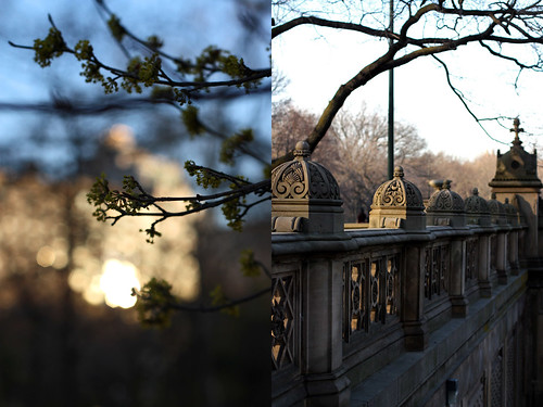 Diptych-Central Park