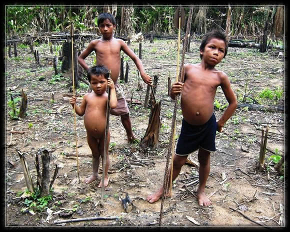 yanomami,amérindiens,amazonie,brésil
