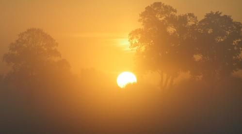 aurore brumeuse en Hurepoix.