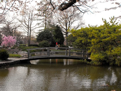 Bridge at Japanese gardens