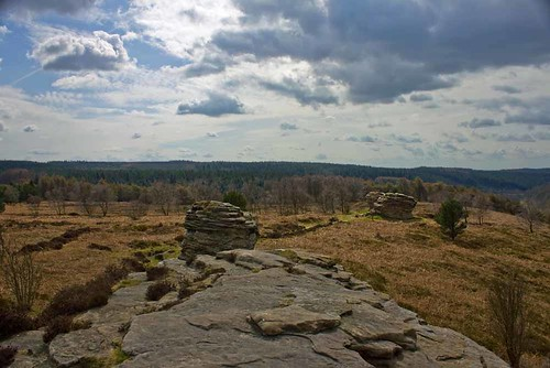 Dalby Forest Bridestones