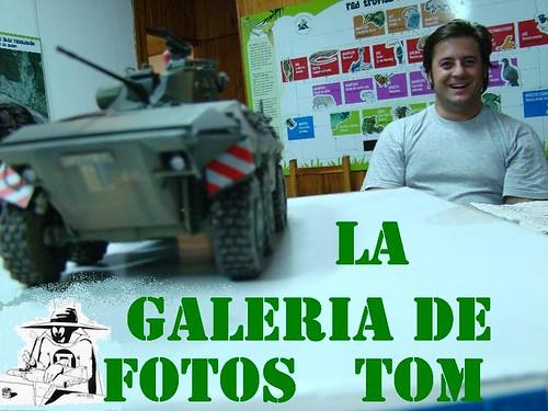 GALERIA TOM