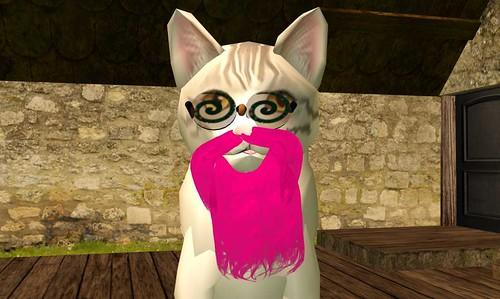 swirly eyed cat with pink beard