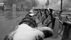 april snow ? frozen bixi (dzpixel) Tags: light white snow black bicycle canon view mtl quebec montreal ixus april neige vole blacknwhite avril bnw compact dz noireblanc 550d bixi 200is t2i theunforgettablepictures samlam dzpixel blqhblqh