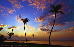 Sunset at Bokeelia (tropicdiver) Tags: sunset gulfofmexico florida palmtrees pineisland bokeelia