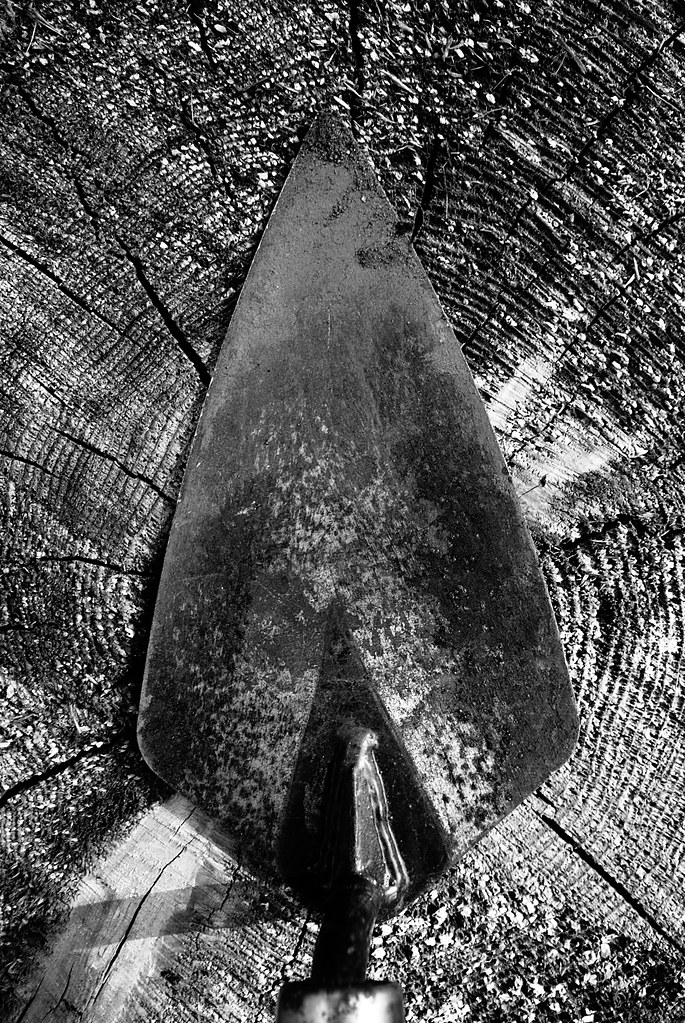 A trowel on a tree stump.