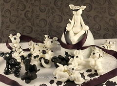 Riana's cats! (Dot Klerck....) Tags: flowers wedding blackandwhite cats rose chocolate capetown dot ribbon minicake cupcakesbydesign