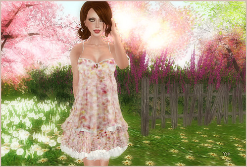 Petite robe - Page 2 4625015080_3d80faeefa