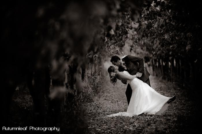 Yanthe & Mark - Dancing in the Vineyard