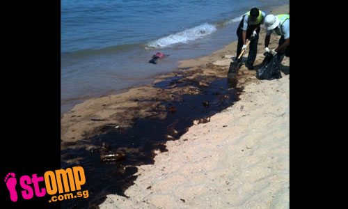 Cleaners work desperately to clean up oily mess at East Coast beach