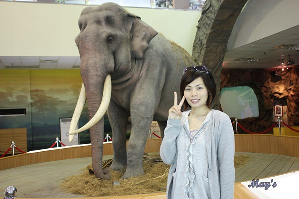 990522台北動物園 077
