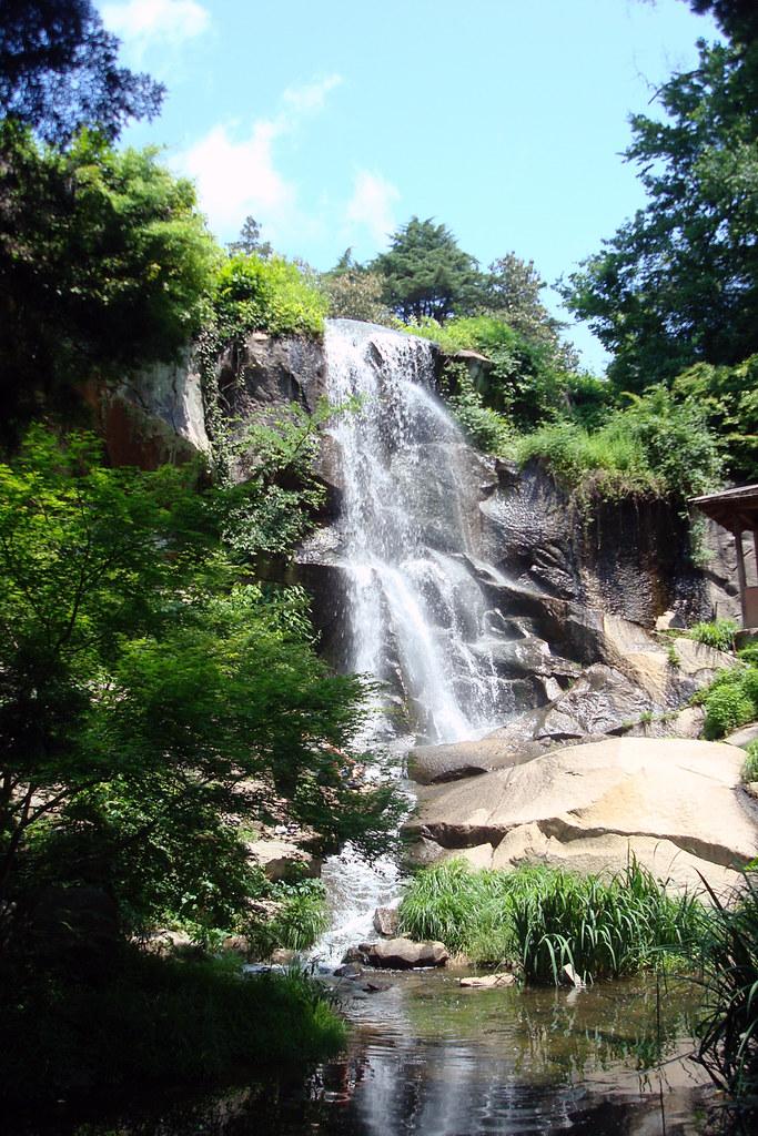 maymont park's japanese garden