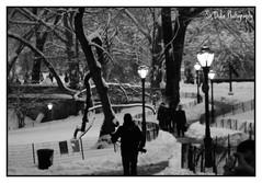 IMG_0104 (~Sir Duke~) Tags: nyc snow photography centralpark manhattan columbuscircle leepak