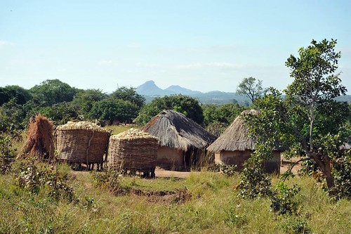 1d. Typical village, Eastern Province, note maize drying on roof