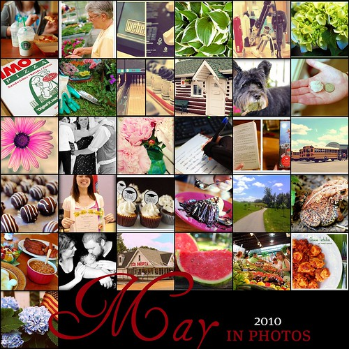 May 2010 365 Mosaic