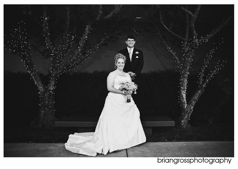 brian_gross_photography bay_area_wedding_photorgapher Crow_Canyon_Country_Club Danville_CA 2010 (19)